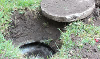 Maintaining older septic systems