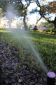 Septic tank cleaning and sprinkler systems