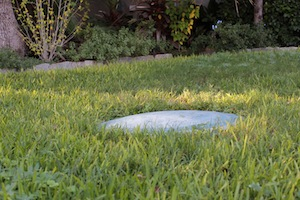 Tips for landscaping over your septic system