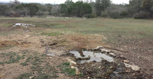 Common septic system drainfield problems