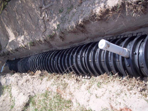 Signs of a septic system backup