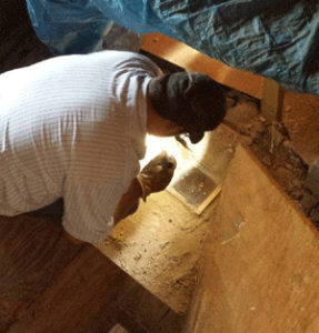 Septic inspection reveals room addition built over tank