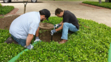 Do you have a septic management plan?